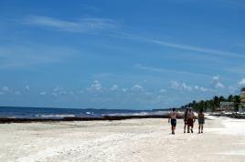 Quintana Roo Tulum Mexico