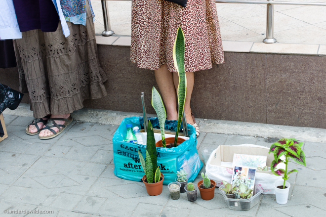 Moldova Chisinau woman selling plants in the streets of Chisinau